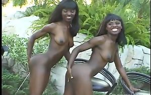Horny louring sisters can't get enough be required of this massive cock